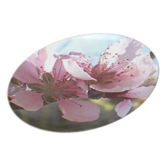 Peach Blossoms Dinner Plates