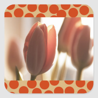 Peach Blush Tulips, cards stickers postcards Sticker