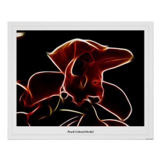 Peach Colored Orchid Print