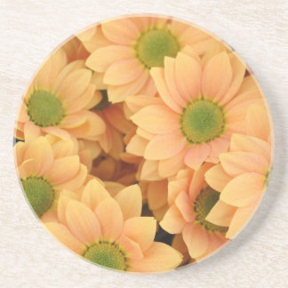 Peach Daisies With Green Center Coaster