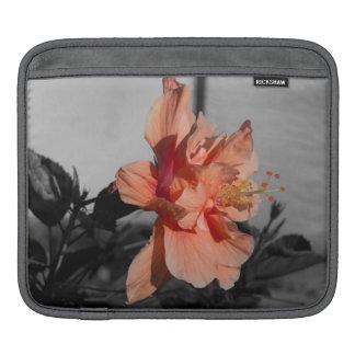 Peach Double Hibiscus Flower Selective Color Photo iPad Sleeve