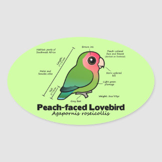 Peach-faced Lovebird Statistics Oval Sticker