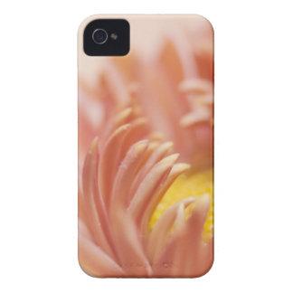 Peach Flower Macro iPhone 4 Case-Mate Cases
