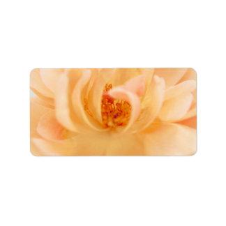 Peach Garden Rose Flower - Romantic Roses Template Label