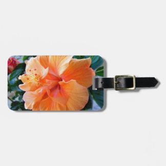 Peach Hibiscus Luggage Tag
