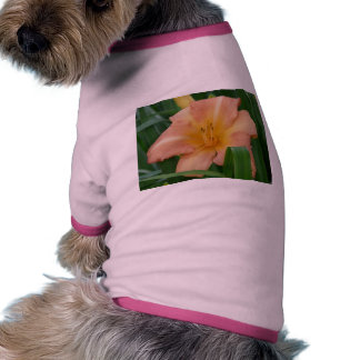 peach lily pet shirt