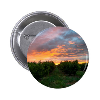 Peach Orchard Sunset 6 Cm Round Badge