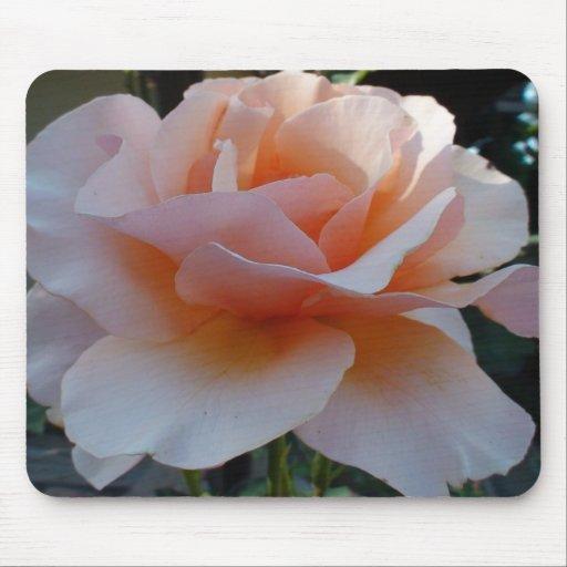 Peach Petal Rose Mousepads