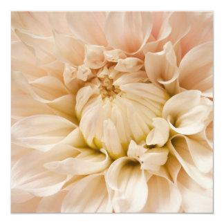 Peach, Pink, White, & Cream Dahlia - Dahlias Card