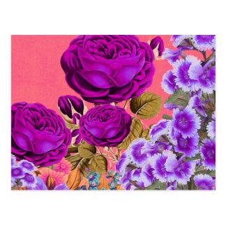 Peach Purple Abstract Rose Garden Postcard