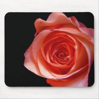 Peach Rose Mouse Mats
