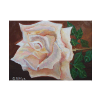 Peach rose oil painting by bbillips on canvas canvas print