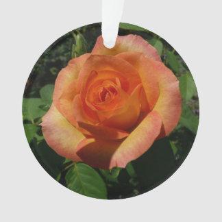 Peach Rose Orange Floral