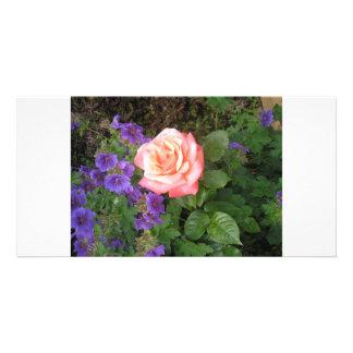 Peach Rose Purple Geraniums Custom Photo Card