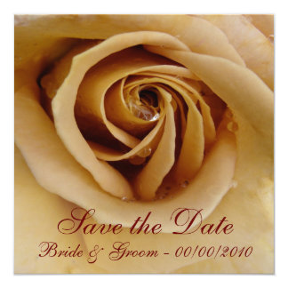 Peach Rose, Save the Date, Bride & Groom - 00/... 5.25x5.25 Square Paper Invitation Card