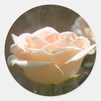 Peach Rose Round Sticker