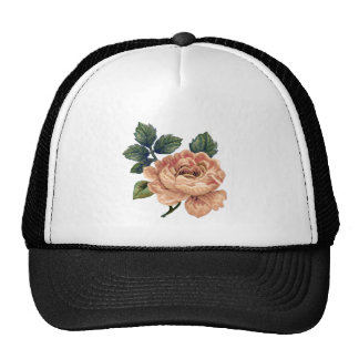 Peach Rose - Vintage Makeover. Cap