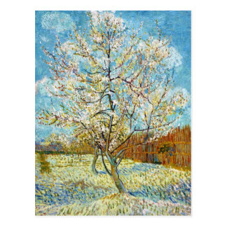 Peach Trees in Blossom Vincent Van Gogh Postcard