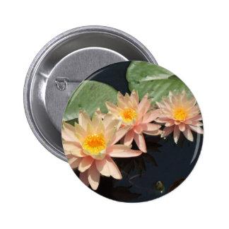 Peach Water Lillies 6 Cm Round Badge