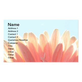 Peaches and Cream Business Cards