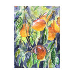 peaches fruit still life watercolor painting stretched canvas print