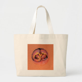 peaches in the extrude bag