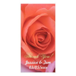 Peachy Wedding Rose Photo Cards