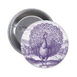 Peacock, a vintage engraving pin