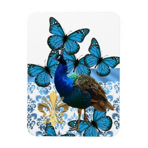 Peacock and blue butterflies magnets