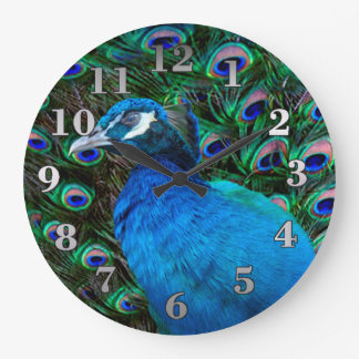 Peacock and Feather Large Clock