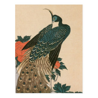 Peacock and Peonies by Ando Hiroshige Post Card