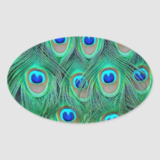 peacock animal print - feathers sticker