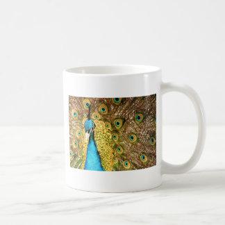Peacock Basic White Mug