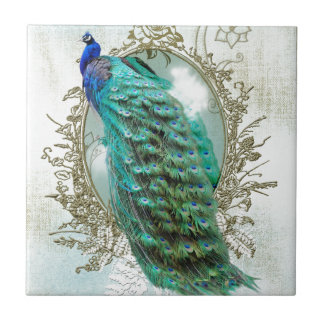 peacock beautiful turquoise vintage shabby bird small square tile