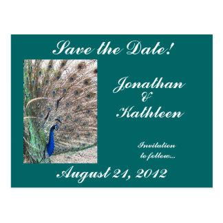 Peacock Bird Animal Save the Date Wedding Postcard