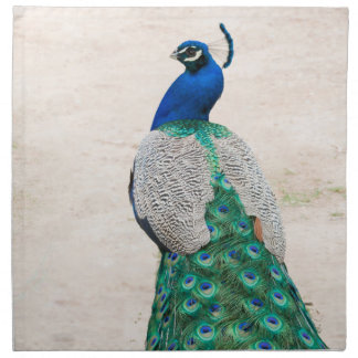 Peacock Bird Feather Teal Turquoise Vintag Napkins