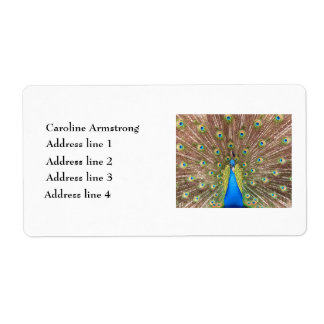 Peacock bird feathers personalized address labels