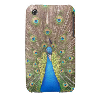 Peacock bird feathers photo iphone 3G case mate