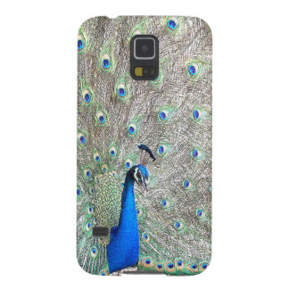 Peacock Bird Galaxy Case