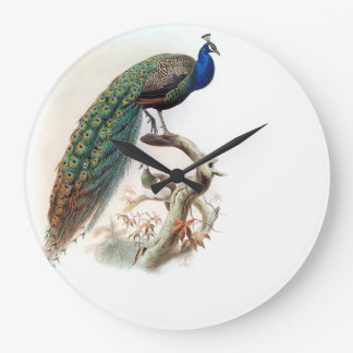 Peacock Bird Wildlife Animals Wall Clock