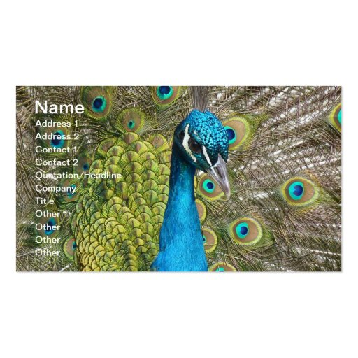 Peacock bird with beautiful feathers business card templates