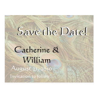 Peacock Birds Save the Date Animals Feathers Postcard