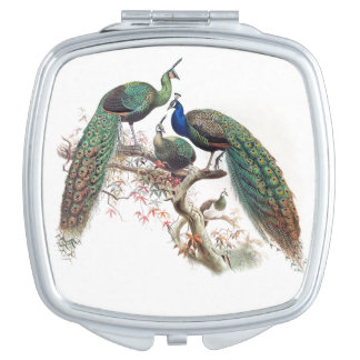 Peacock Birds Wildlife Animal Compact Makeup Mirror