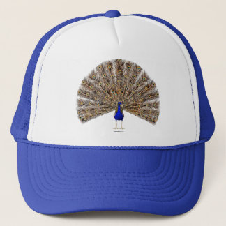 Peacock Blue Hat