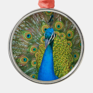 Peacock Blue Head with and Colorful Tail Feathers Christmas Ornament