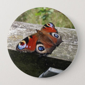 Peacock Butterfly 10 Cm Round Badge
