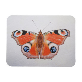 Peacock Butterfly 2012 Rectangular Photo Magnet