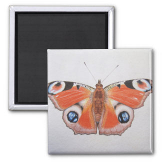 Peacock Butterfly 2012 Square Magnet