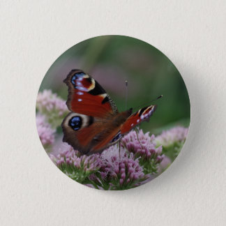 Peacock Butterfly Badge