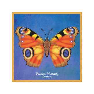 Peacock Butterfly Canvas Print